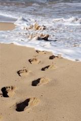 beach_02